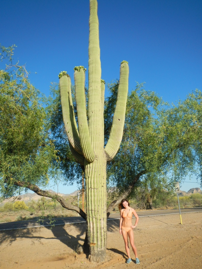 """Ignore my shut eyes, of course he took the picture right when I was saying """"Hurry, its bright!"""" But, that's a huge ass cactus."""